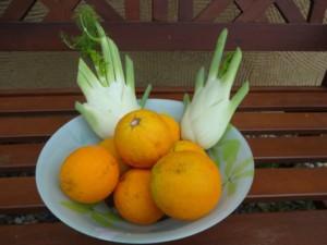 Orange Fenouil