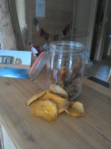 Mangues déshydratées Naturalistic